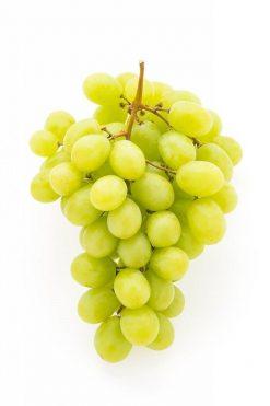 Uva blanca sin pepita kg